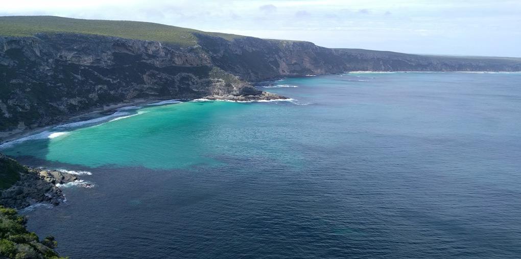 澳洲袋鼠岛两日游